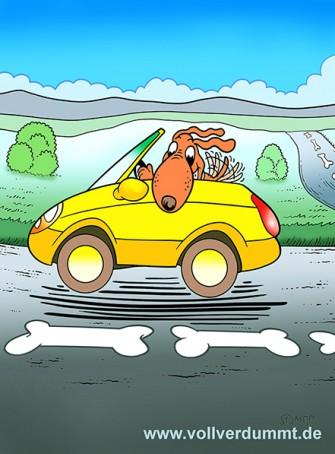 CARTOON Hund im Cabrio