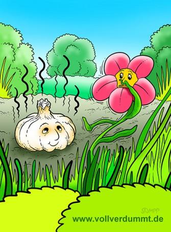CARTOON Knoblauch und Blume