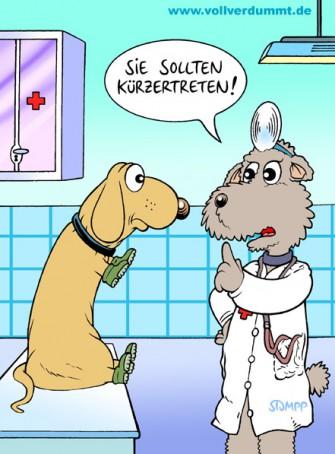 CARTOON Dackel beim Arzt