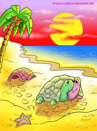 CARTOON Verliebte Schildkröten