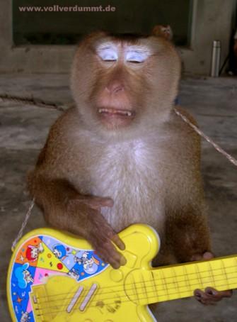 CARTOON Monkey Rockstar singt Ballade