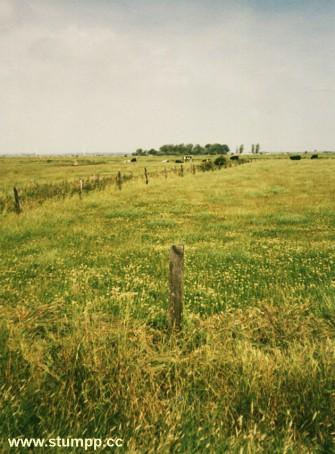 CARTOON Nordfriesland 1996