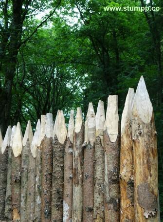 CARTOON Römischer Zaun