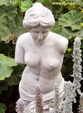 CARTOON Statue und Pflanzen, von oben gesehen